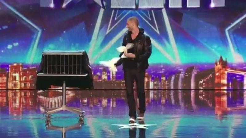 Darcy_Oake_s_jaw-dropping_dove_illusionsBritain_s_Got_Talent_2014.mp4