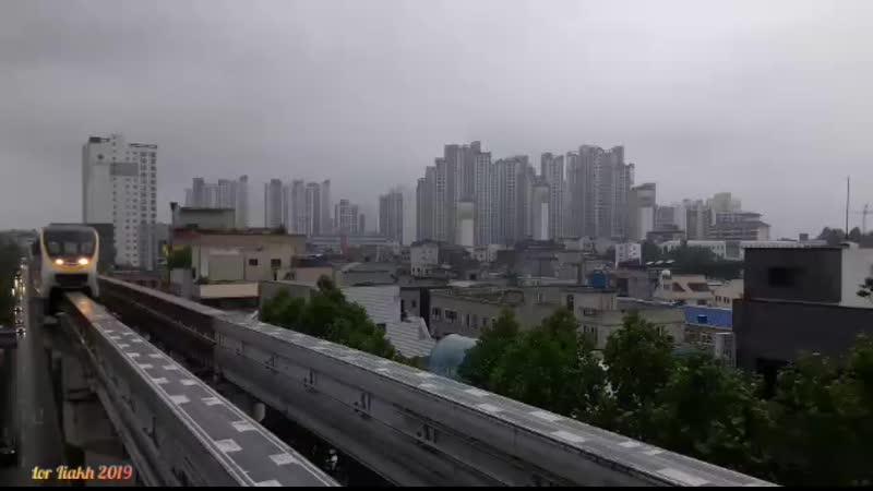 Daegu Gwangju South Korea 2019 by Fedor Liakh Тэгу Кванджу Южная Корея
