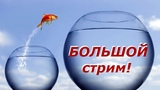 РАБОТА И ЖИЗНЬ В ПОЛЬШЕ! Выход на новый уровень и плохое отношение к Украинцам!