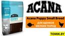 Сухой корм для собак Acana Puppy Small Breed купить в Минске - Акана для щенков мелких пород
