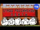 Стадо российской элиты Познавательное ТВ Михаил Величко