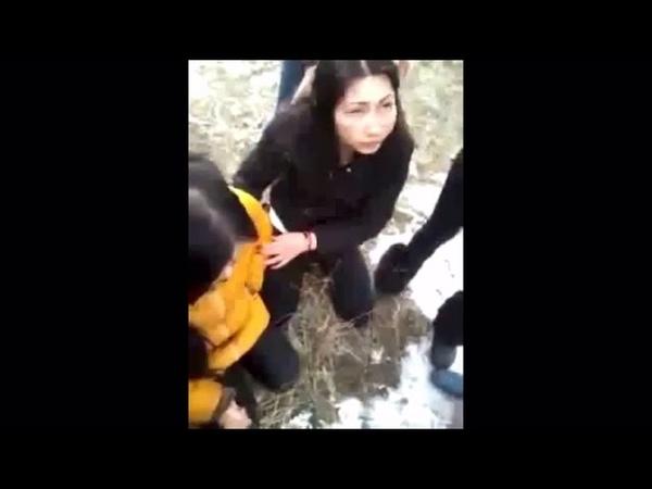 МВД РК разбирается с видео избиения девочек-подростков