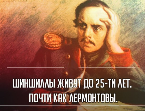 http://cs616630.vk.me/v616630115/29e4/o3NMBL5zo-E.jpg