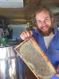 Встреча с Петром Катковым - Азы пчеловодства
