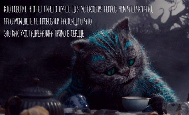 Фото №456245178 со страницы Ульяны Дудниковой