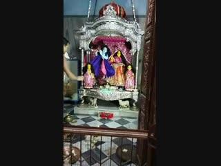 2018-10-20-Mangala Arati Sri Radha Madanmohan Karttika-1 #premgopalgoswami #премгопалгосвами