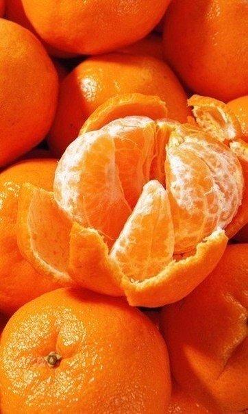 фото мандарин, для Нового Року