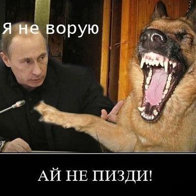 Денис Кухарь, 13 октября 1998, Калининград, id187740545