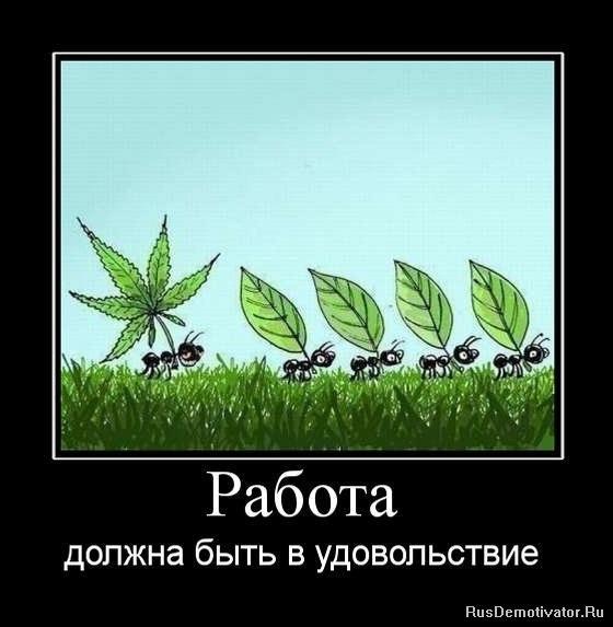 http://cs409531.vk.me/v409531705/3c93/CVM0zJr8MJ4.jpg