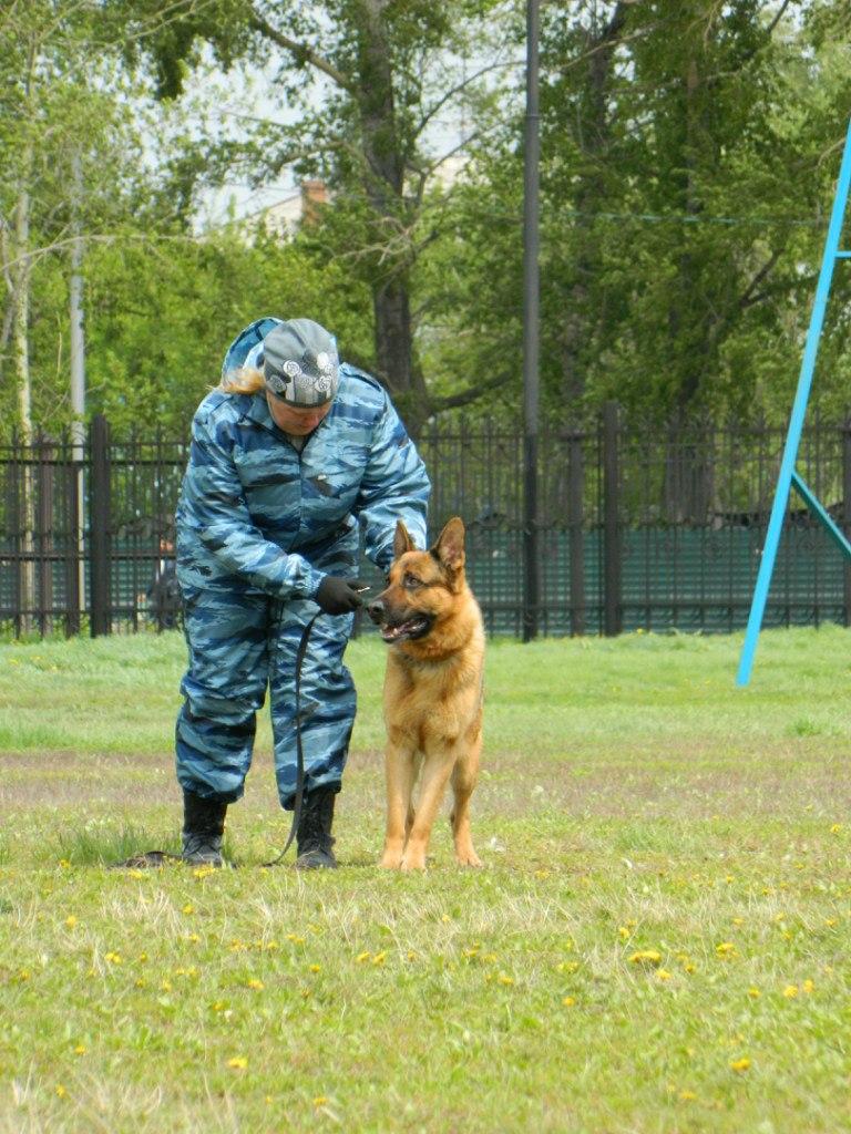 Русский ринг 24.05.14 Новосибирск Ps_yaUXcjI8