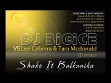 DJ BIGICE vs Lee Cabrera &amp Tara Mcdonald Shake It Balkanika Extended