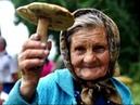 Не кукуй, кукушка! . Песня про пенсионную реформу