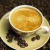 Кофейный гид | kofegid.info