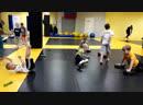 тренировка у самых маленьких в Спартанцах