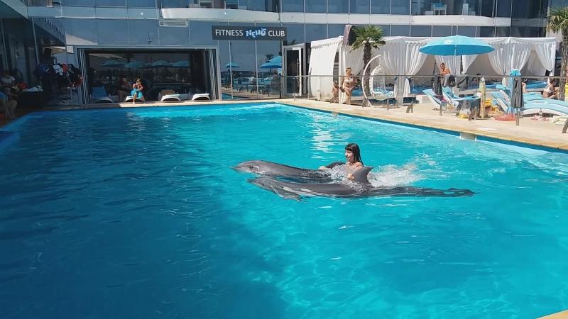Плаваю с дельфинчиками по кличке Барселона и Тиана