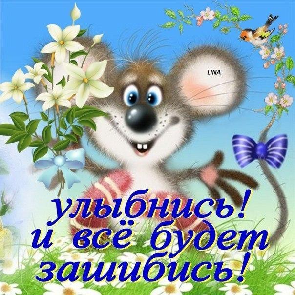 http://cs7061.vk.me/c7004/v7004406/53c4/Sip_Tdd7Ssw.jpg