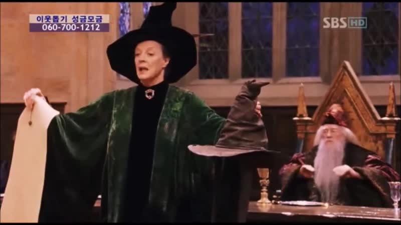해리포터 마법사의 돌 (기숙사 배정)