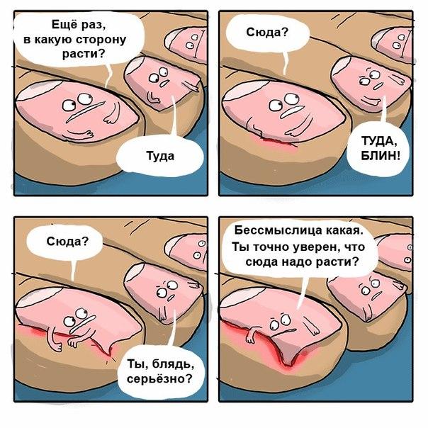ФОТО-ПРИКОЛ НОГТИ РЕСНИЦЫ