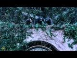 О съемках. Планета обезьян: Революция (2014) |Русские субтитры|