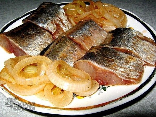САМЫЕ ПРОВЕРЕННЫЕ рецепты засолки рыбы