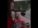 Ласточка в исполнении лебедя на Черном озере