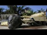 Неопознанный мир - В Красном море выловили гигантскую змею!