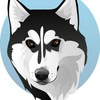 Doge-Money | Официальная группа