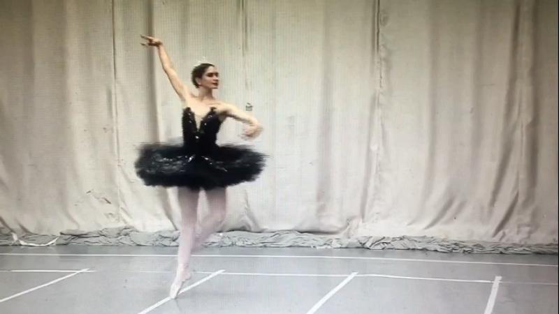 Вариация Одиллии 2017