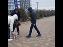 АСТ Staffspace Конкистадор 2 5 мес ПРОДАЕТСЯ