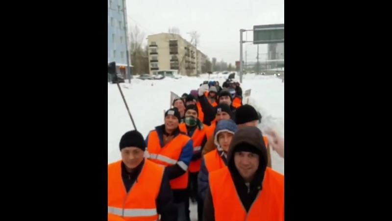 Морковная армия [IRTube]