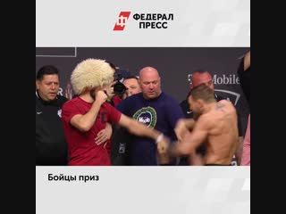 Нурмагомедов и Макгрегор получили дисквалификацию за драку после боя