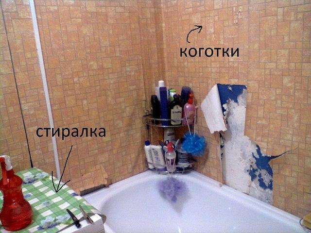 Призрак в ванной?