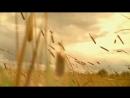Сергей Есенин Любовь хулигана клип 2018 Заметался пожар голубой Исповедь Сергей Безруков