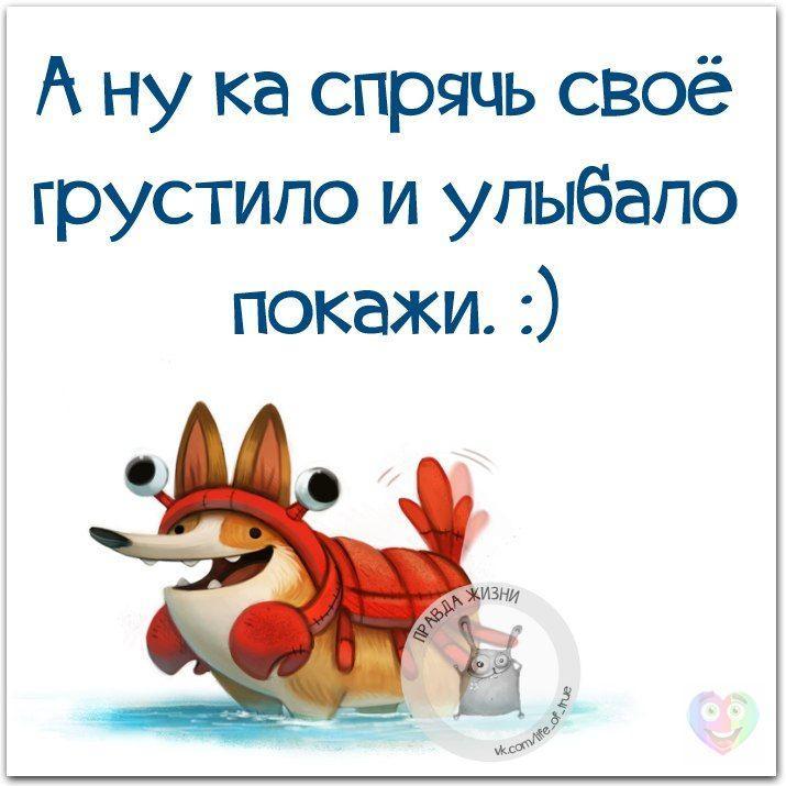 Доброе утро,день,вечер:)))))))) - Страница 7 CdA3cY8tpvk