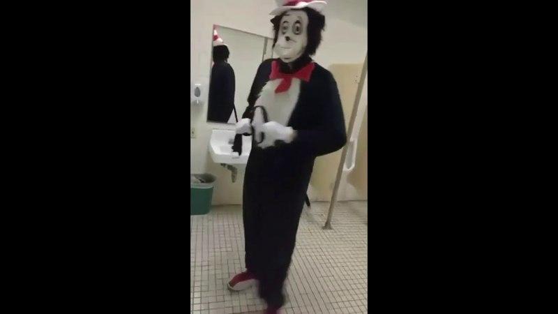 Cat in the hat in bathroom