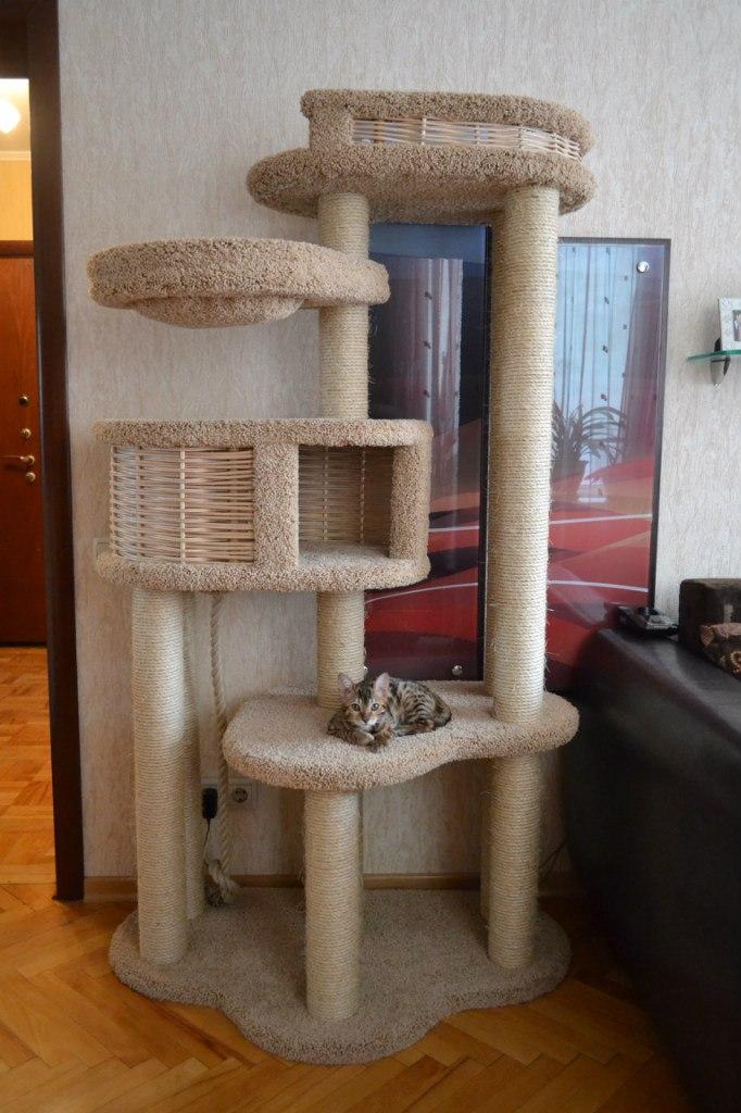 Как сделать домик коту с когтеточкой 595