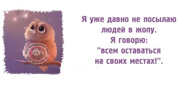 http://cs417227.vk.me/v417227892/56cf/pgKCs7noi84.jpg