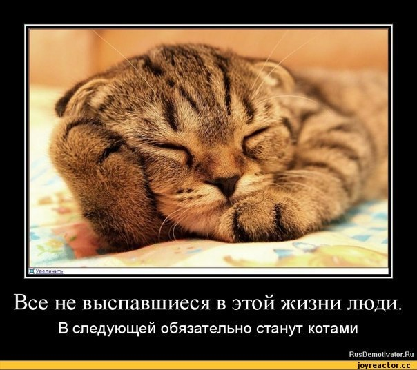 http://cs419229.vk.me/v419229600/4902/bRJbRs3haR4.jpg