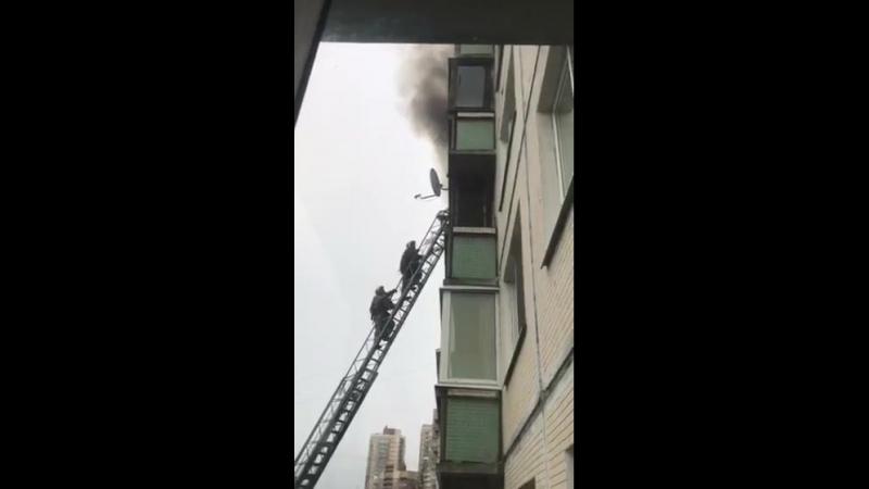 Спасаемый пролетел прямо перед носом у спасателей. 8-ой этаж, не шуточки! Что это было?