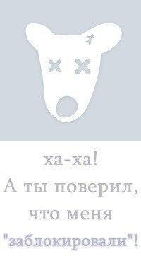 Алина Ахмедголиева, 5 января , Красноярск, id158649194
