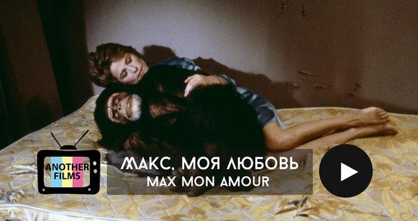 Макс, моя любовь (Max mon amour)