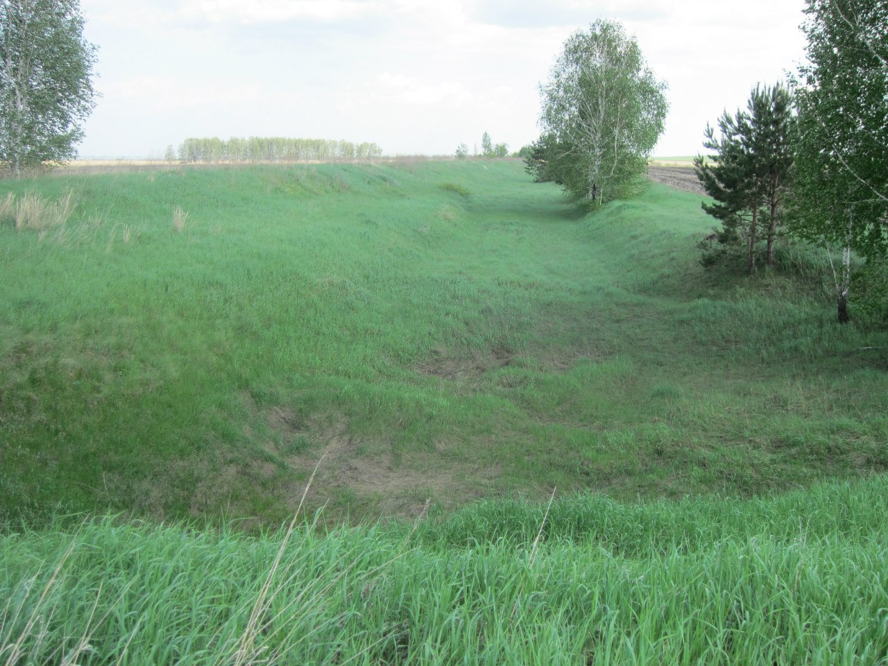 Остатки рва и вала Баландинских городищ (вид с запада на восток) (03.07.2014)