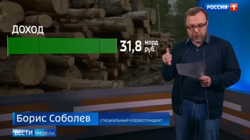 Лесная мафия безжалостно уничтожает даже реликты - Россия :((