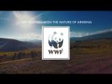 WWF Armenia - 15 Years Old