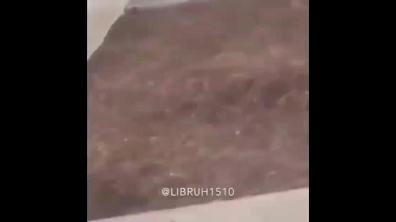 B R O O K L Y N (720p).mp4