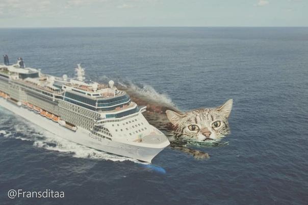 Художник из Индонезии представил, как котики могли бы захватить наш мир, будь они чуть больше обычного