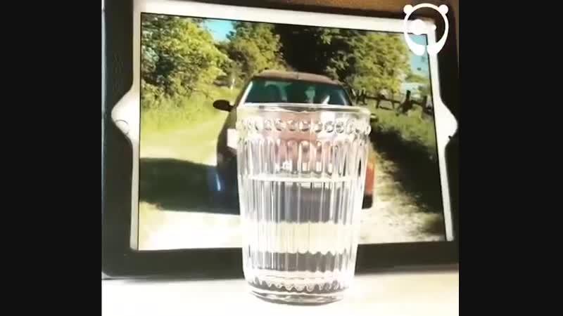 Фан Тайм (видео приколы)