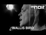 Wallis Bird - Holding A Light (live bei TV Noir)