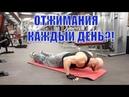 Юрий Спасокукоцкий • 300 Отжиманий в День 14 Дней Подряд РЕЗУЛЬТАТЫ ПЕЧАЛЬНЫ