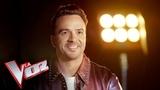 Luis Fonsi: las 10 cosas que no sabías del nuevo coach de 'La Voz Antena 3'